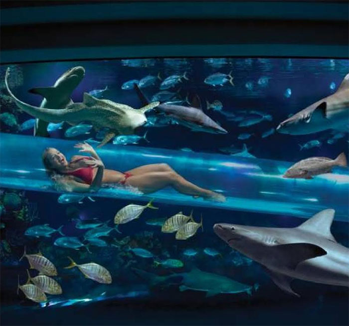 The 10 World 39 S Scariest Swimming Pools That Will Make You Melt How Trend News
